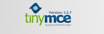 WSIWYG редактор TinyMCE